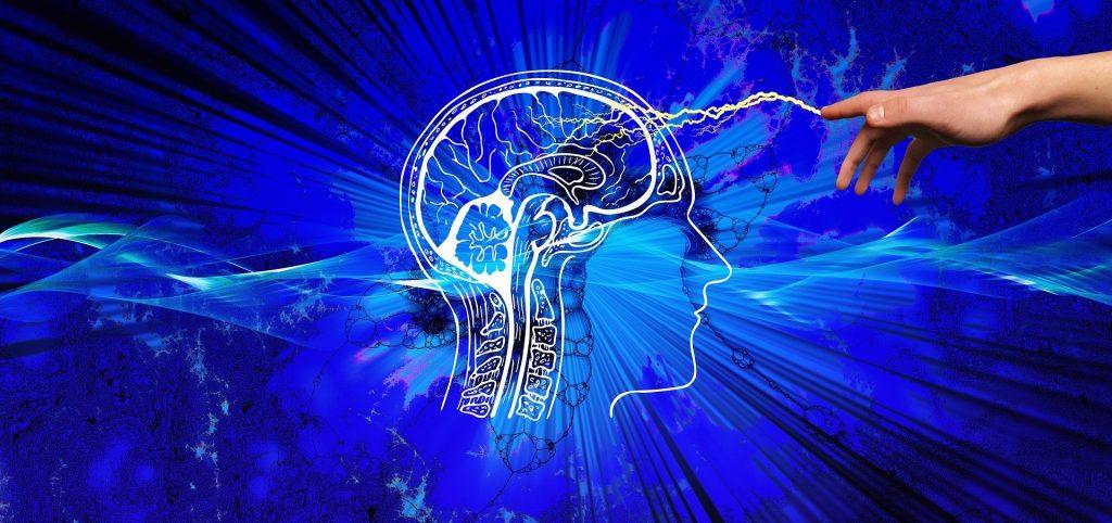 Increase Dopamine in the Brain